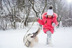 A girl in a pink jacket and hat runs in the snow next to a Husky. Dog. Little girl playing with a Siberian husky breed dog in the winter in the snow Royalty Free Stock Photos