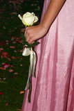 Girl in pink with white rose. A young girl dressed in pink silk dress, holding a rose - part of the wedding attire stock photo