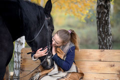 Girl in a plaid with a black horse in the autumn under a birch tree on a bench Royalty Free Stock Photography