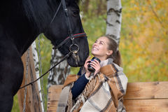 Girl in a plaid with a black horse in the autumn under a birch tree on a bench Stock Image