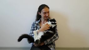 A girl in a plaid shirt beckons a fluffy black and white cat to her. Takes her in his arms, hugs and kisses . Pet happy stock footage