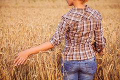 Girl in plaid shirt touching of ripe wheat ears. Close-up. Horizomtal. Unrecognisable person Stock Images
