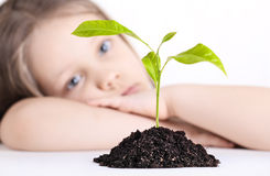 The girl and plant. The thoughtful girl looks at a young plant stock photography