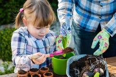 Free Girl Planting Flower Bulbs Royalty Free Stock Photos - 59119608