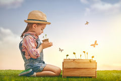 Girl planting seedlings. Cute little child girl planting seedlings. Fun little gardener. Spring concept, nature and care stock image