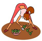 Girl planting seedlings. Young girl is planting seedlings stock illustration