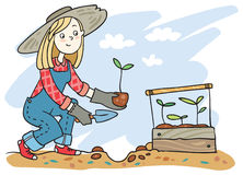 A girl planting sprouts stock photography