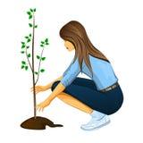 Girl planting a tree. Illustration stock illustration