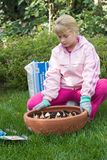 Girl planting tulips. Girl outside in the garden planting spring bulbs into container on fall stock photos