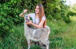 Girl play cute goat. Veterinarian occupation. Eco farm. Love and care. Feeding animal. Animals law. Woman and small goat