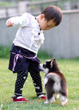 Girl play with dog. A chinese girl play with a dog Royalty Free Stock Images