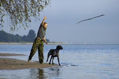 Girl play with dog. At the water stock images