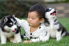 Girl play with puppy. A chinese girl play with two puppies Royalty Free Stock Photo