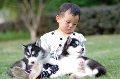 Girl play with puppy. A chinese girl play with two puppies Stock Photo