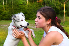 Girl play with white puppy on the summer forest background Stock Image