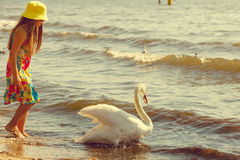 Girl playing with adult swan. Royalty Free Stock Photography