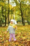 Girl playing in autumn park Royalty Free Stock Images