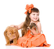 Girl playing with cat and dog. isolated on white background Stock Photography