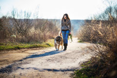 Girl playing with Caucasian shepherd dog, autumn. Young woman playing with Caucasian shepherd in a delightful spring day stock images