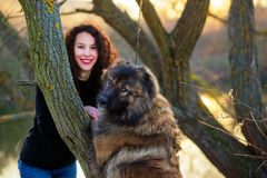 Girl playing with Caucasian shepherd dog, autumn. Young woman playing with Caucasian shepherd in a delightful spring day stock photo
