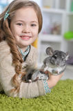 Girl playing with chinchilla Royalty Free Stock Photo