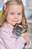Girl playing with chinchilla Royalty Free Stock Photos