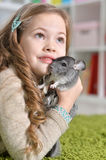 Girl playing with chinchilla Royalty Free Stock Photography
