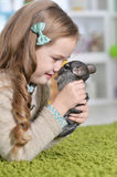 Girl playing with chinchilla Stock Photos