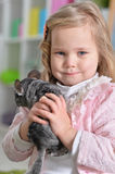 Girl playing with chinchilla Stock Images