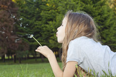 Girl playing with dandelion Royalty Free Stock Image