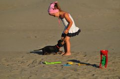 Girl playing with a dog. On the beach Stock Photography