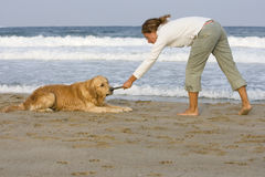 Girl playing with dog. Young girl and her dog playing on the beach with stick Stock Photography