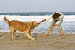 Girl playing with dog. Young girl and her dog playing on the beach with stick Stock Photos