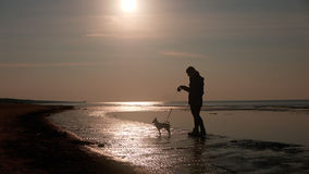 Girl playing with dog on beach. Girl playing with dog on a beach Stock Photography