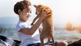 Girl playing with dog on hammock. Asian little girl playing with her dog on hammock stock image