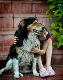 Girl playing with a dog. Girl is  hugging a labrador dog in the garden Stock Photo