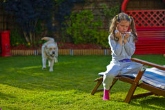 Girl playing with a dog. Girl is playing with labrador dog in the garden Royalty Free Stock Photos