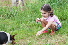 Girl playing with dog outdoors Stock Photo