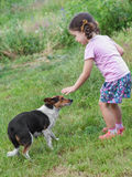 Girl playing with dog outdoors Stock Photography