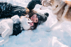 Girl playing with dogs in snow Royalty Free Stock Photo