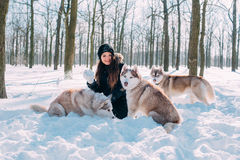 Girl playing with dogs in snow royalty free stock images