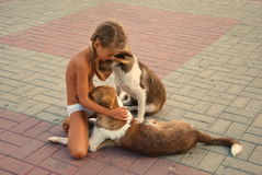 Girl playing with dogs on the waterfront Stock Photos