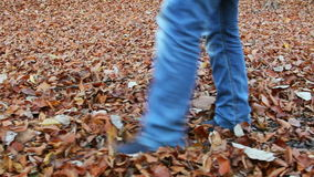 Girl playing with fallen leaves in the forest. / Steady Footage shot with dolly stock footage