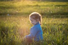 Girl playing on the field with green grass. A little girl sitting on the field with green grass Royalty Free Stock Photography