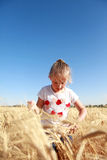 Girl playing in a field of wheat. Summer day Stock Photos