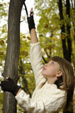 Girl playing in forest Stock Photos