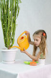 Girl pours from a watering can cacti Royalty Free Stock Images