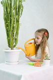 Girl pours from a watering can cacti Royalty Free Stock Photography