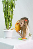 Girl pours from a watering can cacti Royalty Free Stock Photo