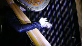Girl playing the harp stock footage